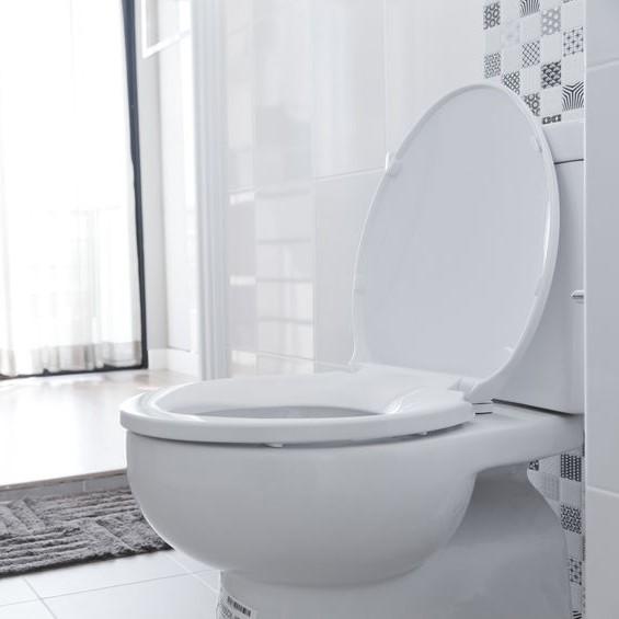 toilet in need of repair